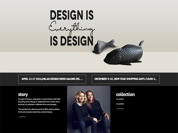 Web project for boudesign
